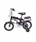 Bicycle (size: 12)